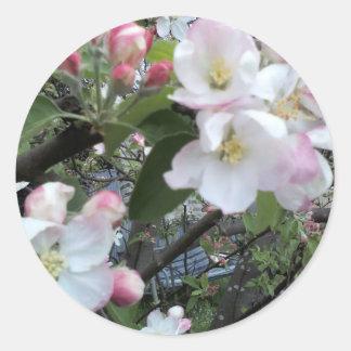 Apple florece etiquetas redondas