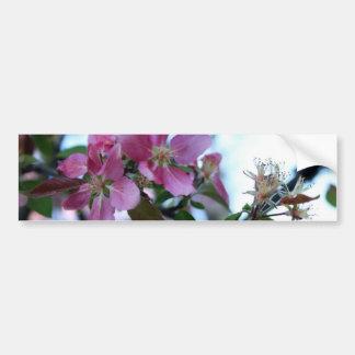 Apple florece pegatina para el parachoques pegatina para auto