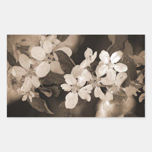 Apple florece pegatina rectangular
