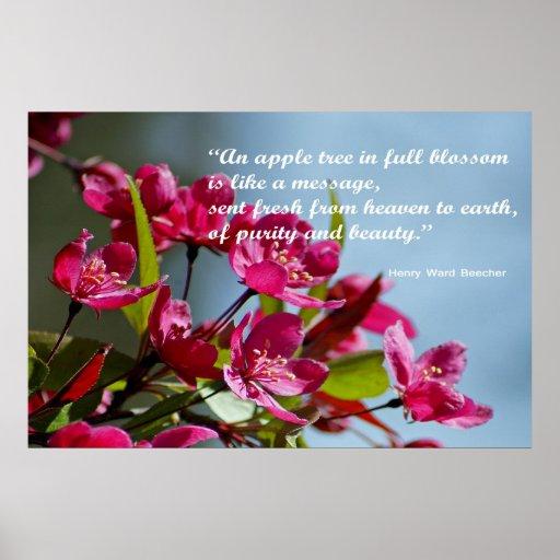 Apple florece poster con cita