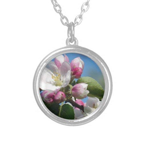 Apple florece primer colgantes