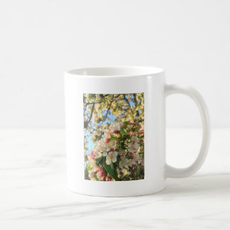 Apple florece sol taza