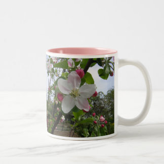 Apple florece taza