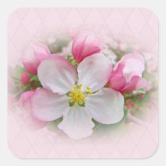 Apple florece tiempo pegatina cuadrada