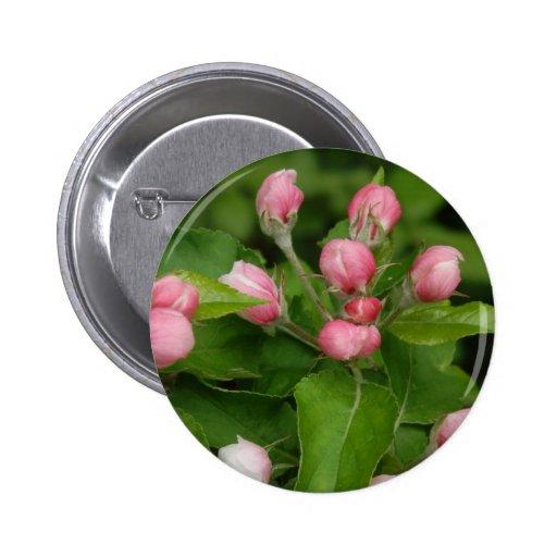 Apple florece tiempo pin