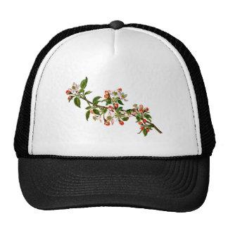 Apple Flowers Trucker Hat