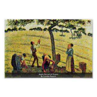 Apple Harvest At Eragny,  By Camille Pissarro Poster