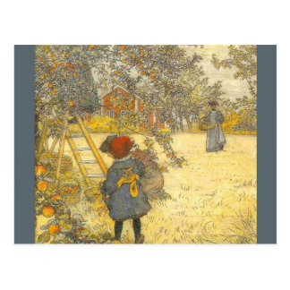 Apple Harvest by Carl Larsson Postcard