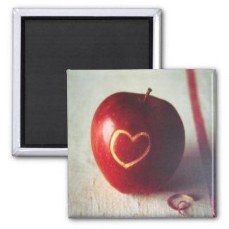 Apple Heart Magnet magnet