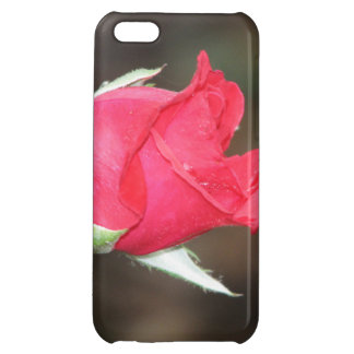 Apple IPhone 5C Cell Phone Case Red Rose