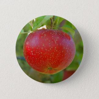 Apple Lobo Pinback Button