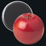 "Apple Magnet<br><div class=""desc"">Apple</div>"