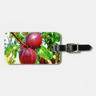 Apple Of My Eye Color Drawing Bag Tag