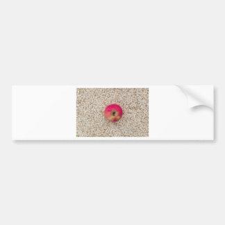 Apple on oatmeal bumper sticker