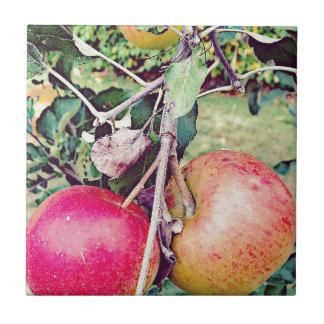 Apple Orchard Ceramic Tile