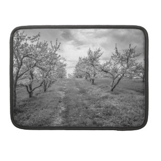 Apple Orchard in Spring Sleeve For MacBooks