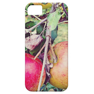 Apple Orchard iPhone SE/5/5s Case