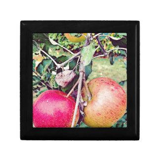 Apple Orchard Jewelry Box