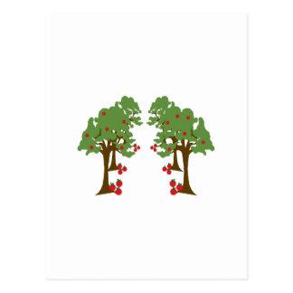 Apple Orchard Postcards