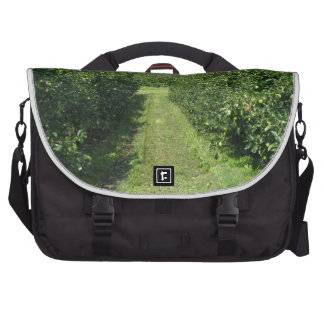 Apple orchard with protection nets commuter bags