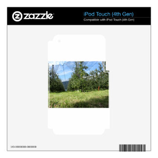 Apple orchard with protection nets iPod touch 4G decal