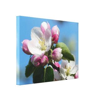 Apple perfecto florece WrappedCanvas (el lustre) Impresión En Lona Estirada