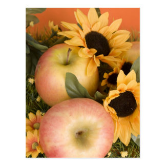 APPLE POSTCARD