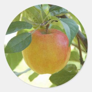 Apple Prima stickers