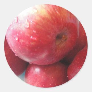 Apple product classic round sticker