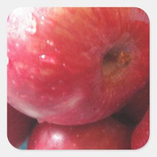 Apple product square sticker