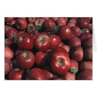 Apple red delicious cosecha tarjeta de felicitación