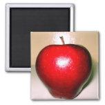 apple red fridge magnets