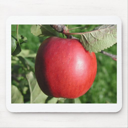 Apple rojo con una hoja tapete de ratón