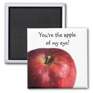 Apple rojo en blanco imán para frigorifico