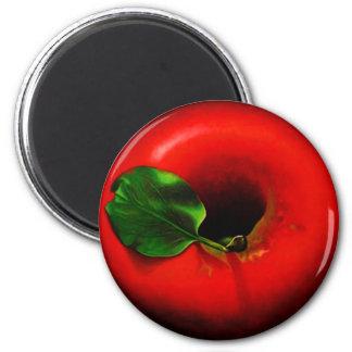. Apple rojo Imán De Nevera