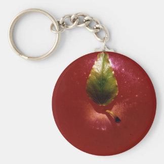 Apple rojo llaveros