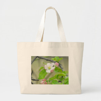 Apple rosado florece bolsas
