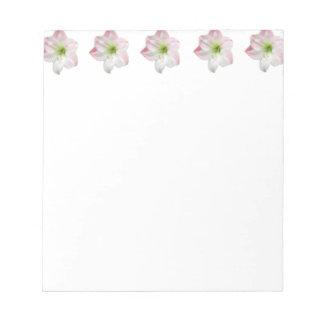 Apple rosado florece libreta del Amaryllis Bloc De Notas