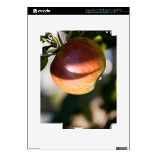Apple iPad 3 Decal