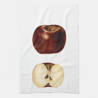 Apple Slice Kitchen Towel