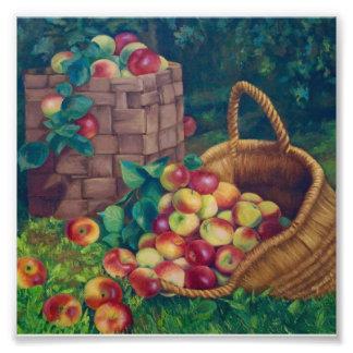 Apple Spas Photo Print