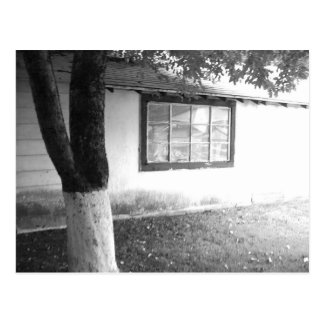apple tree and old tool shed postcard