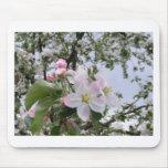 apple-tree blossom mouse pad