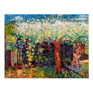 Apple Tree Blossom Postcard
