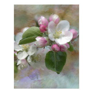 Apple Tree Blossoms Letterhead