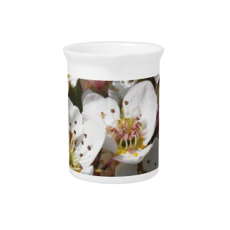 Apple tree branches with blossoms drink pitcher