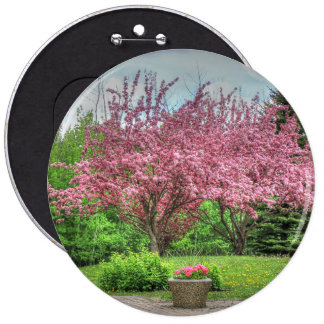 Apple Tree Pinback Buttons