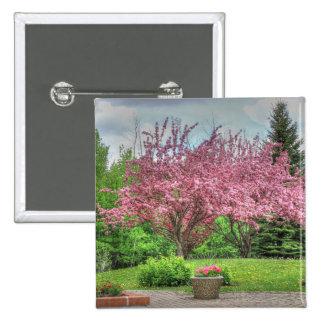 Apple Tree Pinback Button