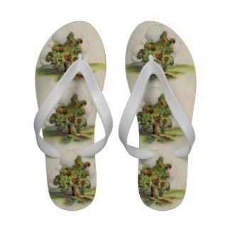 Apple Tree Sandals