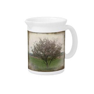 Apple Tree in Bloom Beverage Pitcher